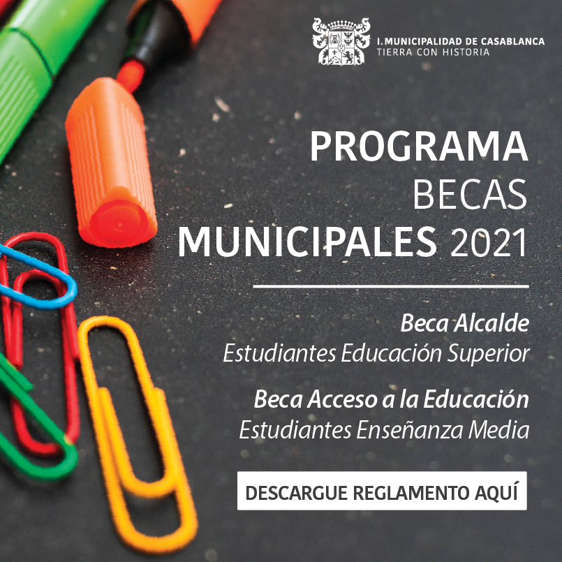 Becas educacionales banner lateral